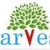 Harvest International School Bengaluru Teachers Job Vacancy