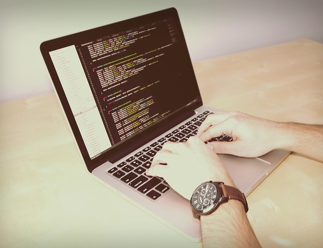 progarmer, devoleper, hacker