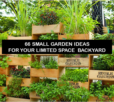 66 small vegetables garden ideas for your limited space for Limited space gardening ideas