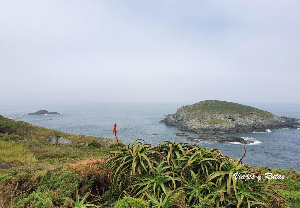 Isla de Vega, Asturias
