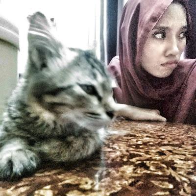 20 Ciri-Ciri Pencinta Kucing yang Obses
