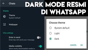 Cara Mengganti Tema Whatsapp Tanpa Aplikasi Tambahan Dark Mode