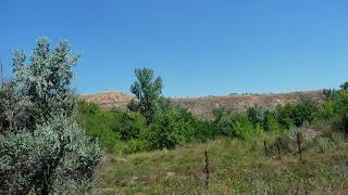Андроновка, Каменка. Отработанный карьер. Байрачный лес создал зелёные острова в каменоломне