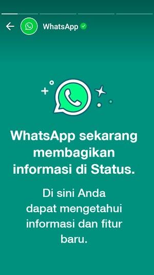 Ada Pesan Resmi WhatsApp di Status WA