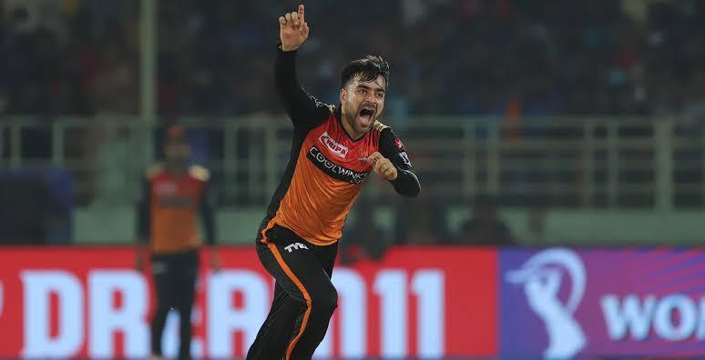Most wicket in ipl 2019 Rashid khan