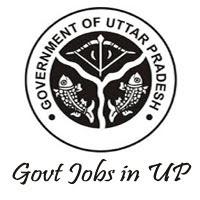 Government of Uttar Pradesh 2021 Jobs Recruitment Notification of ASHA 163 Posts