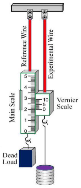 Elasticity Class 11 Physics | Notes