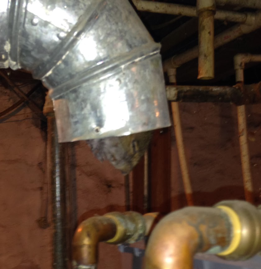 KC Water Heaters: Watch for critters in your flue pipe