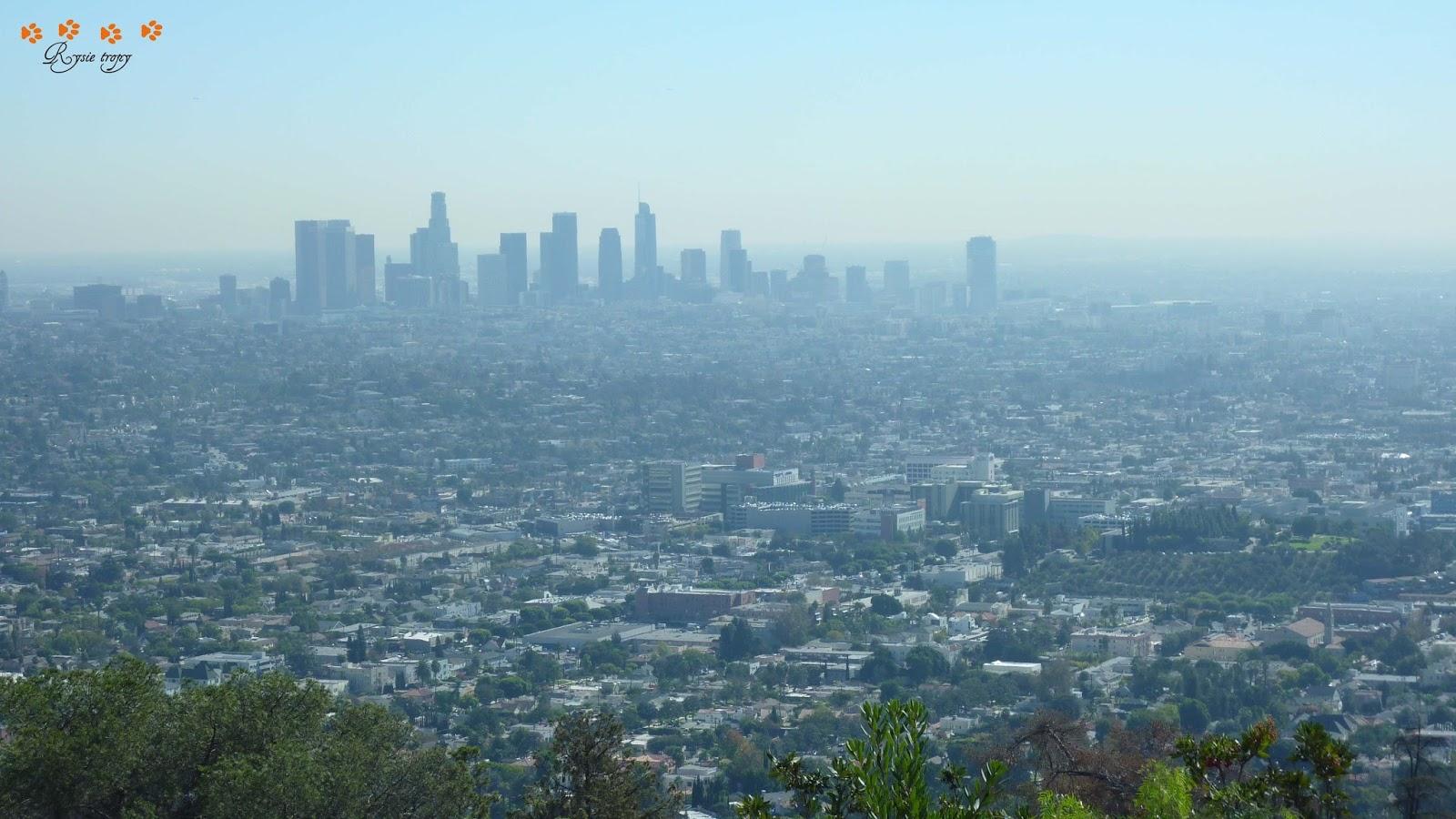 Najlepsze usługi kojarzeń w Los Angeles