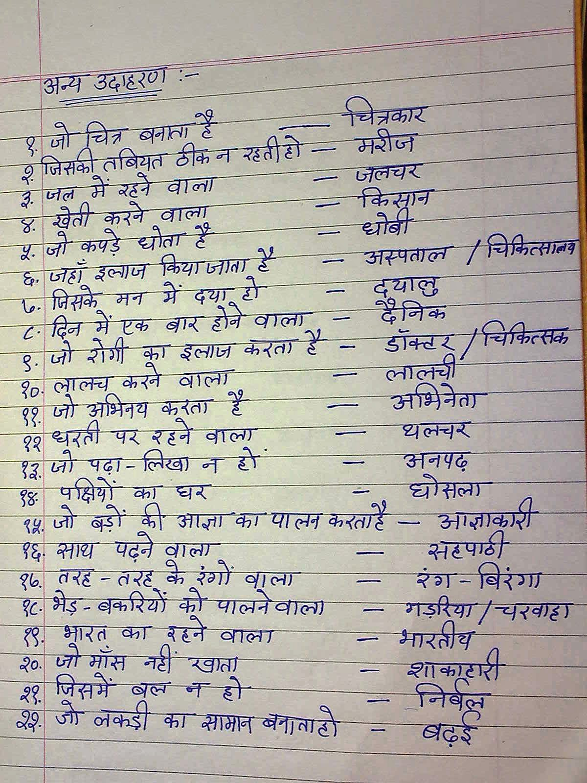 5 Sentences About Birds In Hindi