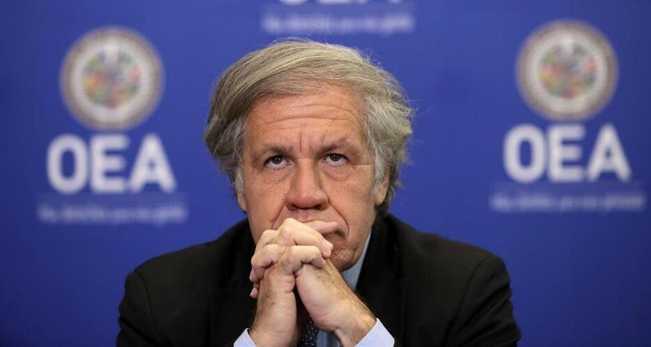 """La OEA subraya que no avala fraudes electorales """"sean de izquierda o de derecha"""""""