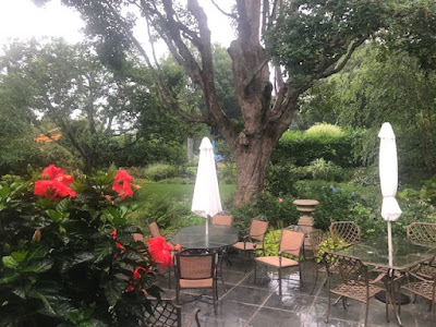 View of patio seating in a rainy garden