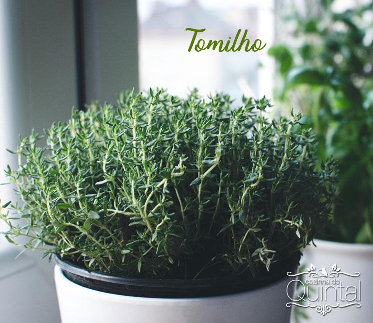 Tomilho fresco é imprescindível na minha cozinha =)