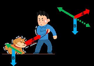 uso de coleira em cães