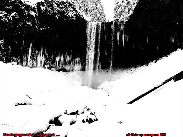 Frozen Tamanawas Falls Hood River