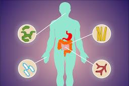 Mengenal Mikrobioma, Penting