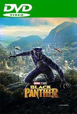 Pantera Negra (2018) DVDRip Latino AC3 5.1