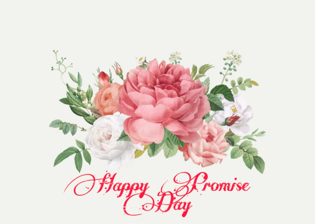 Promise Day Images New 2021 WhatsApp DP Facebook Article And HD Image Shayari