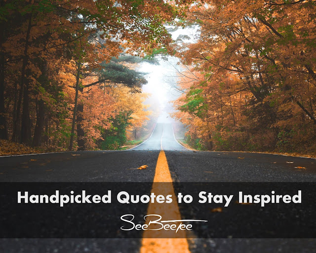 Handpicked Quotes to Stay Inspired!