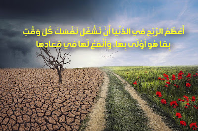 https://www.a9walwahikam.com/