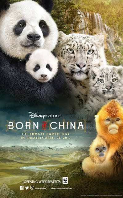 Born in China (2016) ταινιες online seires oipeirates greek subs