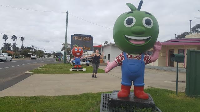 The BIG Apple Men of Donnybrook