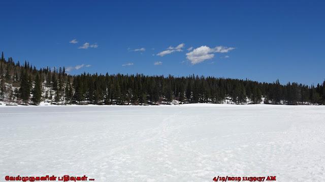Bear Lake Rocky Mountains National Park