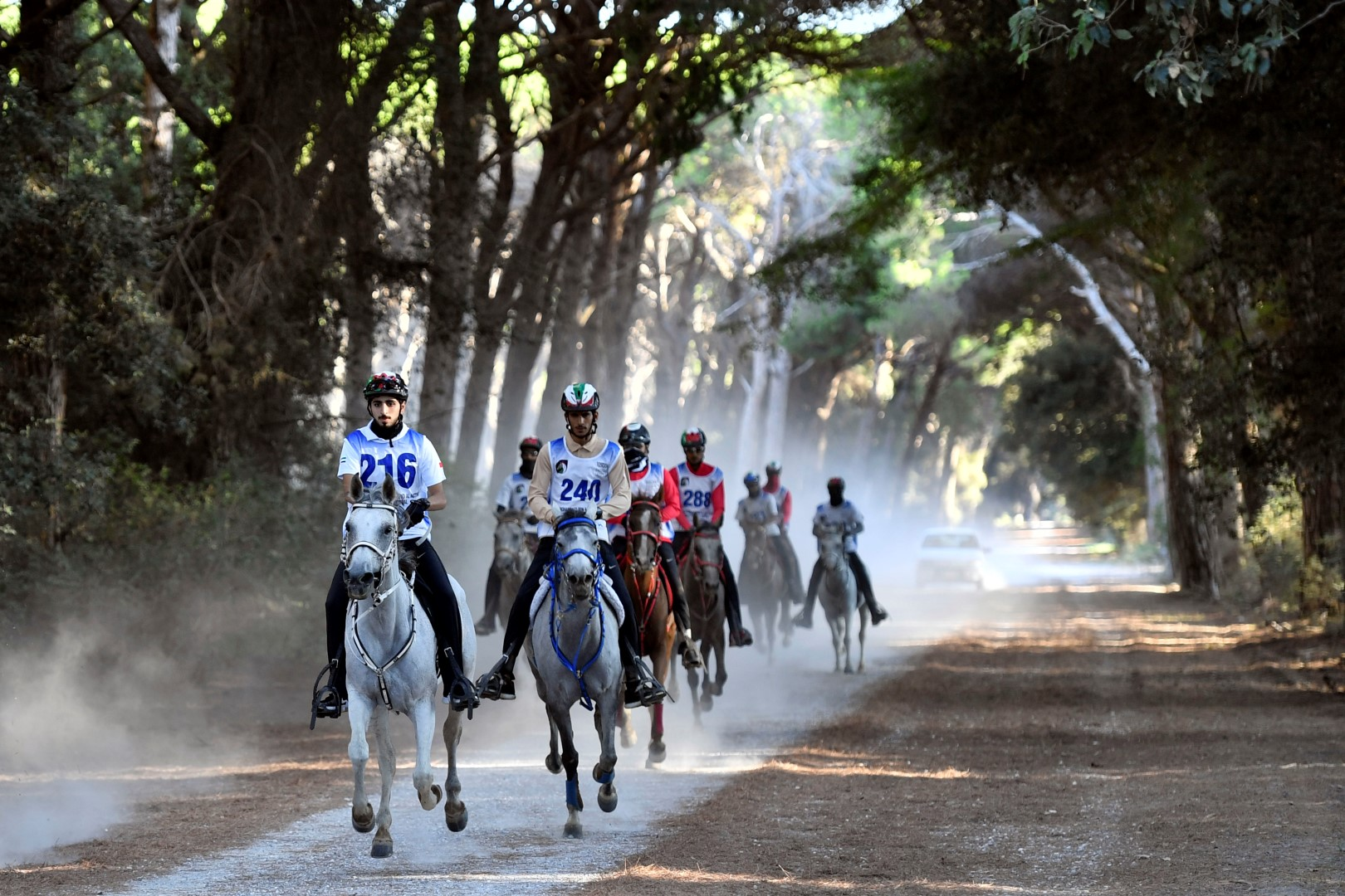 UAE Knights to vie for top honors in endurance race
