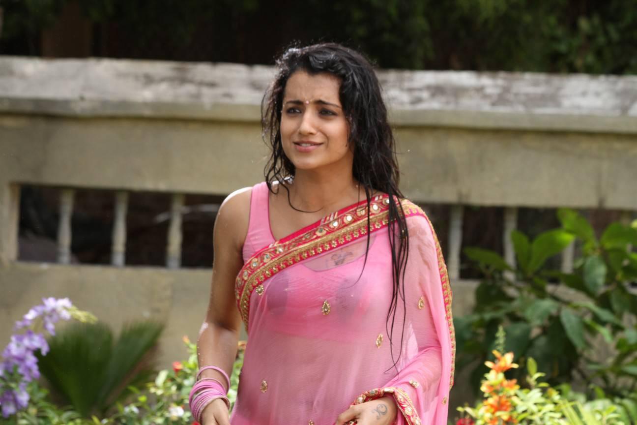 Actress In Wet Saree Hot Naval Show Pics