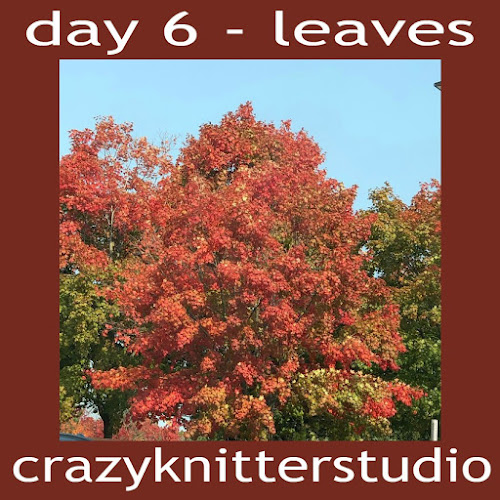 6leaves%2Bcrazyknitterstudio.jpg