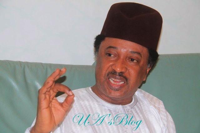 Buhari: Seek divine healing – Shehu Sani advises Nigerians attacking Oyedepo
