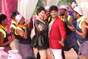 Pokiri Raja Movie Stills-thumbnail-1