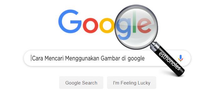Cara Mencari Menggunakan Gambar Di Google Esthonoles