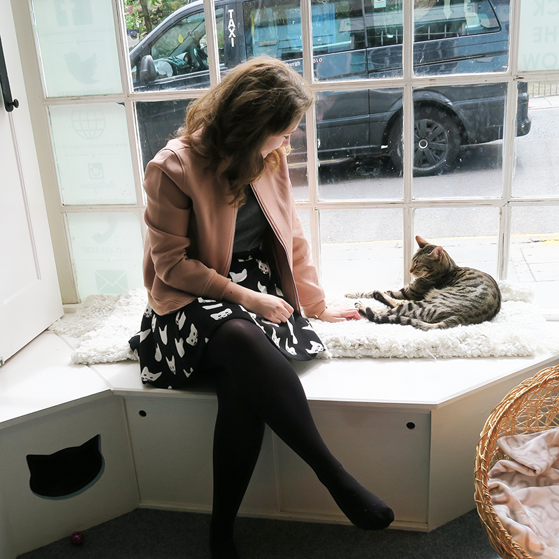 Maison De Moggy Cat Cafe Edinburgh Review | Colours and Carousels - Scottish Lifestyle, Beauty and Fashion blog