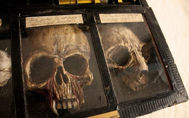 Αυτά τα πλάσματα ταρακούνησαν την παγκόσμια κοινότητα. Βρέθηκαν σε αρχοντικό στο Λονδίνο φωτογραφίες
