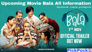 How can download Bala movie, Bala Movie, Bala Flim Trailer, Information, Ayushmann Khurrana, PickPock