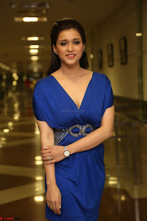 Mannara Chopra in Short Blue Dress at Rogue Movie Teaser Launch 1st March 2017 048.JPG