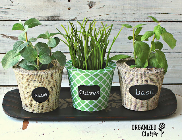 Easy and Decorative Herb Pot Upcycles #Potsox #chalkboardlabels #stencil #crafting #dollargeneral #herbpots
