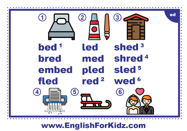 ed family words - printable flashcard with pictures