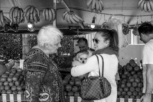 Duas senhoras na feira, uma delas com um cachorrinho.