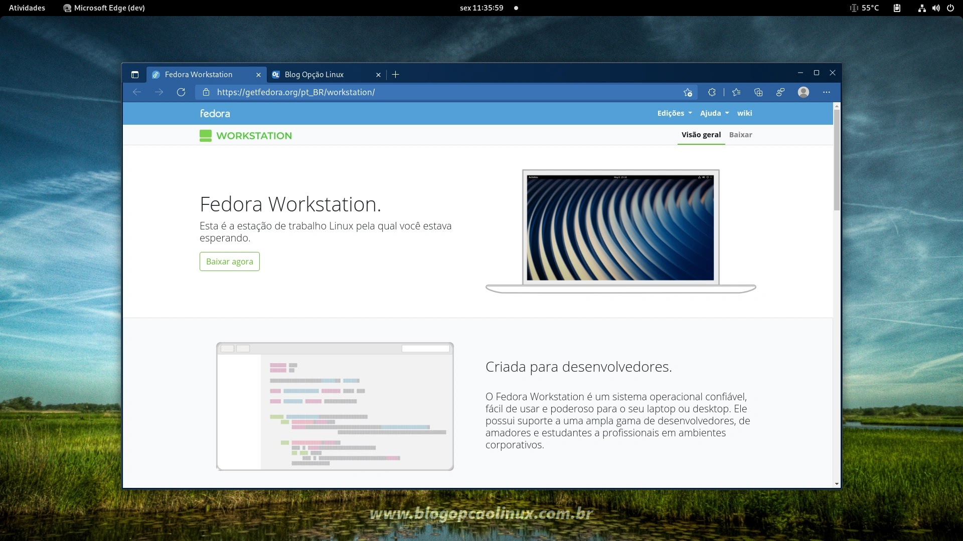 Navegador Microsoft Edge executando no Fedora Workstation