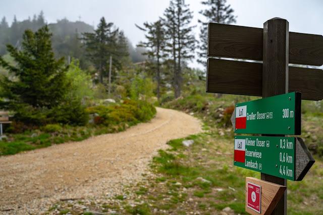 Künischer Grenzweg auf den Osser | Wanderweg La1 im Lamer Winkel | Wandern im Bayerischen Wald | Naturpark Oberer Bayerischer Wald 11