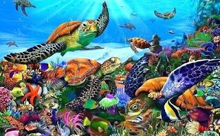 जलीय जीव के नाम ▷ List of Sea Animals Names