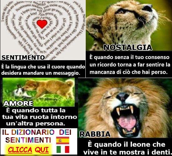 http://amor71.blogspot.it/2016/06/dizionario-dei-sentimenti.html