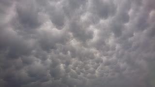 梅雨空 雨でも遊べる 全天候型施設 ポールダンス インドアスポーツ