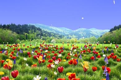 اجمل صورالطبيعة في العالم خلفيات