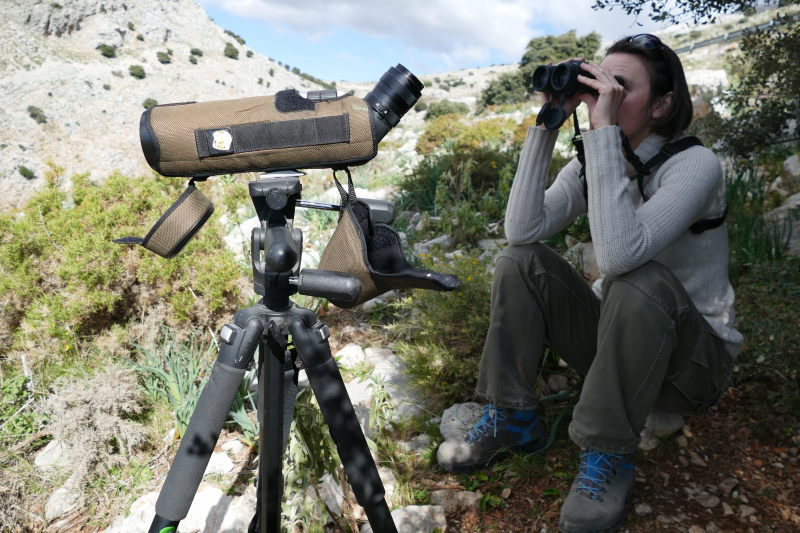 Censando aves con telescopio y prismáticos. Serranía Ronda. AEA Bosque Animado