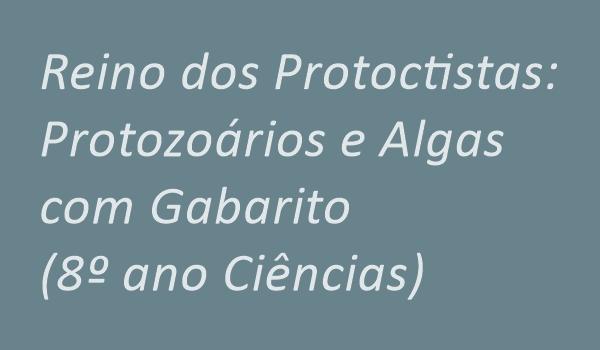 atividade-sobre-reino-dos-protoctistas-protozoarios-e-algas-com-gabrito-8-ano-ciencias