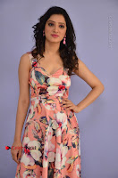 Actress Richa Panai Pos in Sleeveless Floral Long Dress at Rakshaka Batudu Movie Pre Release Function  0002.JPG