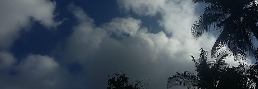 langit siang yang biru dan cerah